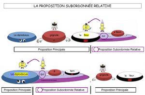 le-proposition-subordonnee-relative-300x197 Propositions