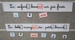 pluriel-phrases-2-300x161 dans orthographe