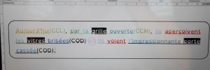 exercice copie grammaire 1