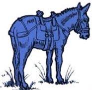 âne bleu