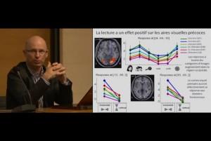 neurones de la lecture