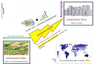 urbanisation et croissance urbine