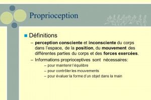 Proprioception+Définitions