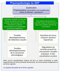 physiopathologie du SDP
