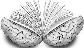 cerveau livre